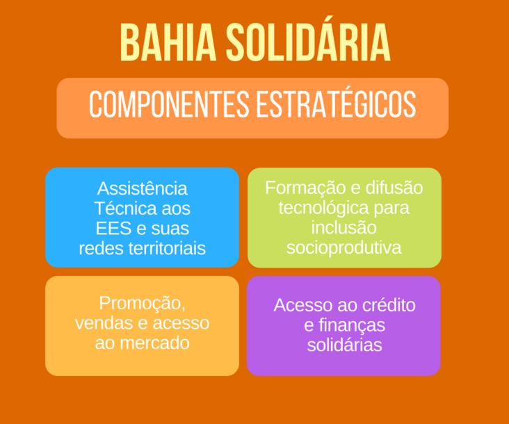 Bahia Solidária - Componentes estratégicos