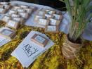 Terreiros inauguram espaço de comercialização de plantas medicina...
